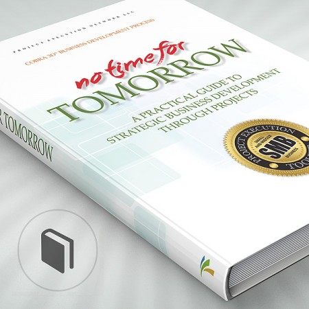 No Time for Tomorrow: A Practical Guide to Strategic Business Development through Projects