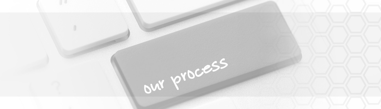 PROJEX Consulting Process