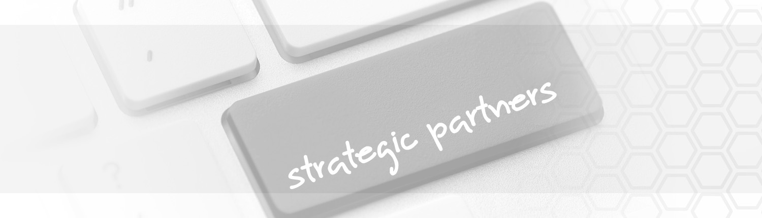 PROJEX Strategic Partners